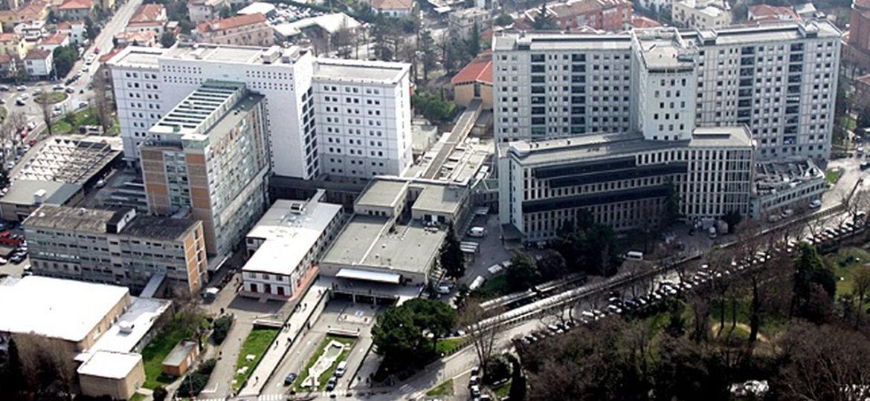 Ospedale-Padova-thegem-blog-default